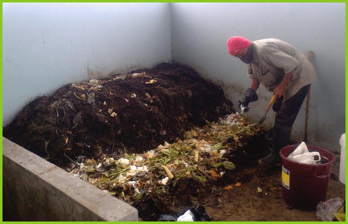 Cara Membuat Pupuk Organik dari Limbah Rumah Tangga